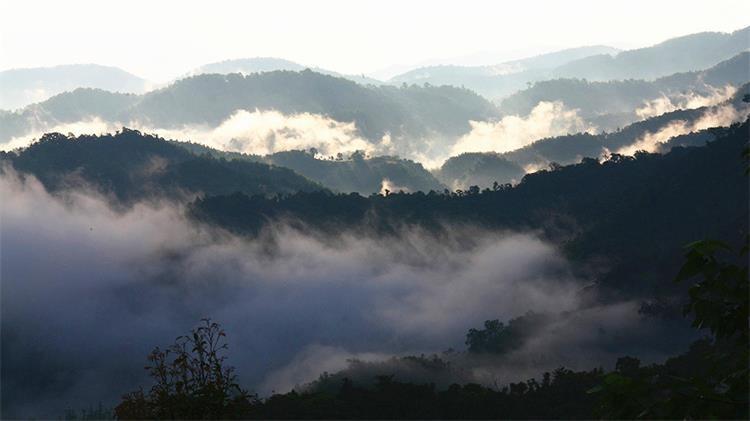 Wuzhishan Mountain