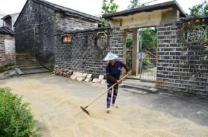 Shibahang-Village