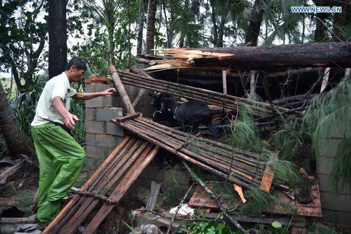 hainan-typhoon-sarika-7