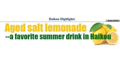 Haikou Highlights: Aged Salt Lemonade