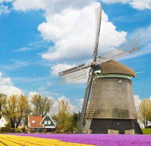 rotterdam-windmill