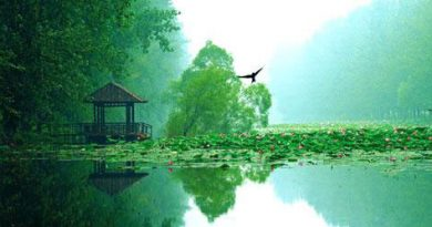 wetlands-in-hainan
