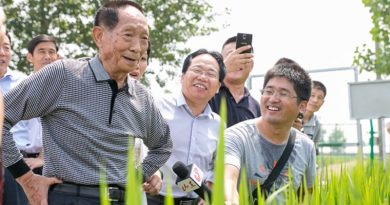 "Yuan Longping announces plans for high yield ""Sea rice"""