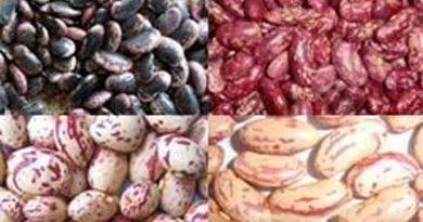 Hainan Taikoo Cereals, Oils Trade Co Ltd