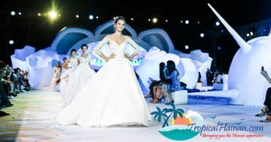 The 2017 Sanya Destination Wedding Expo to be held this December