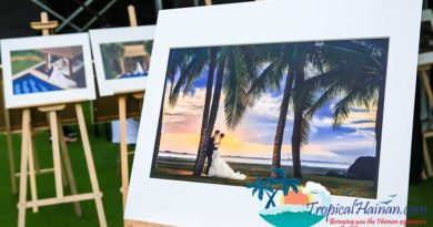 Successful-Conclusion-to-the-Sanya-Destination-Wedding-Expo-2017-(1)
