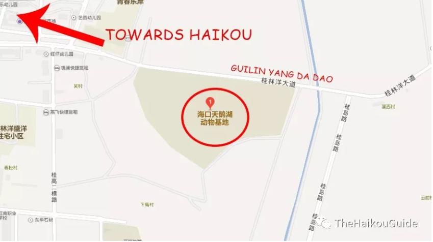 Guilin yang zoo location