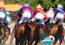 Hainan's emerging horse racing industry starting to attract investment