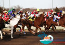 And they're off …. Luoniushan signs strategic agreement with horse racing firm on Hainan sports project
