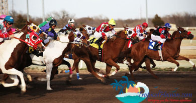 Luoniushan-unit-signs-strategic-agreement-with-horse-racing-firm-on-sports-and-agro-ecological-project
