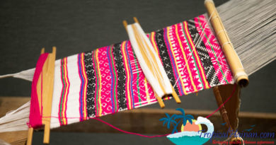 Li-Minority-weaving Hainan Island