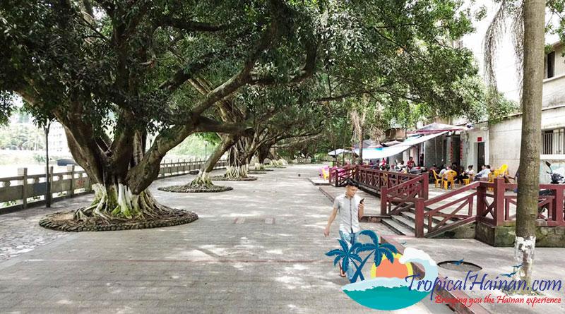 Whats-to-do-in-wuzhishan-Hainan-Island