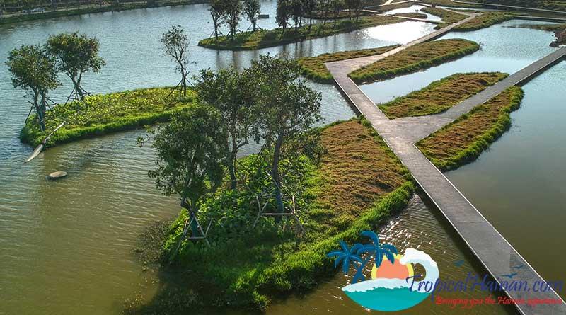 Discover-the-Meishe-Wetlands-Park-Haikou-2
