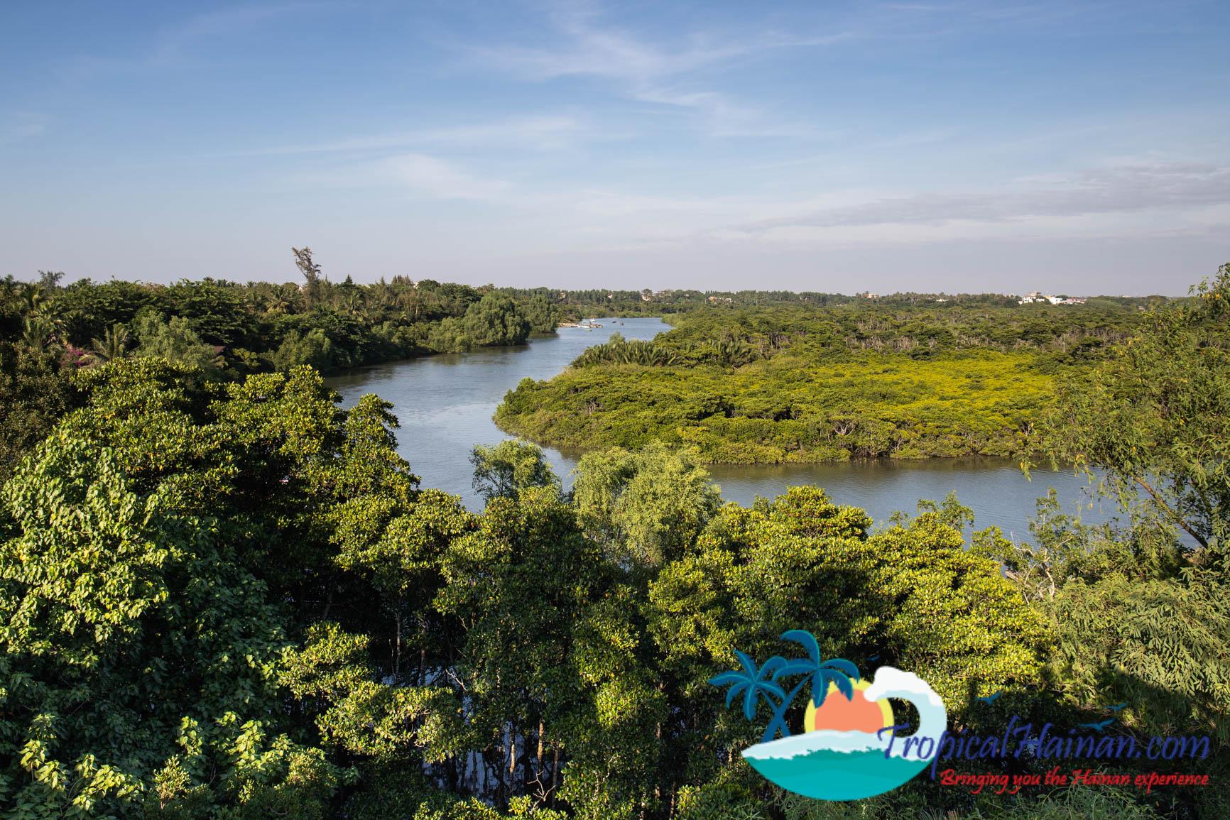 Dongzhaigang Mangroves and wetlands Haikou Hainan Island China (5 of 18)