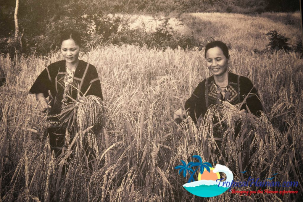 Li Minority culture on Hainan island, an in-dept guide, part 2 Li villages