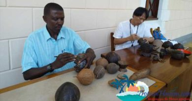 Master coconut carver and Mayor of Victoria, Seychelles revisit Haikou, a journey of 50 years