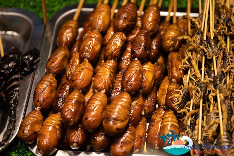 Qilou-snack-street-Haikou-City-Hainan-Island-silkworms