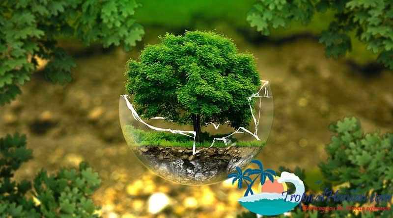 Palm-Eco-Town-Development-Co-Ltd-signs-development-project-worth-6.6-billion-Yuan-($962.63-million)-for-Qionghai