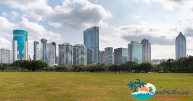 Haikou listed as promising city