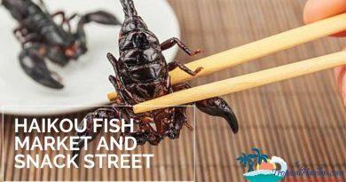 Haikou fish market and Qilou snack street