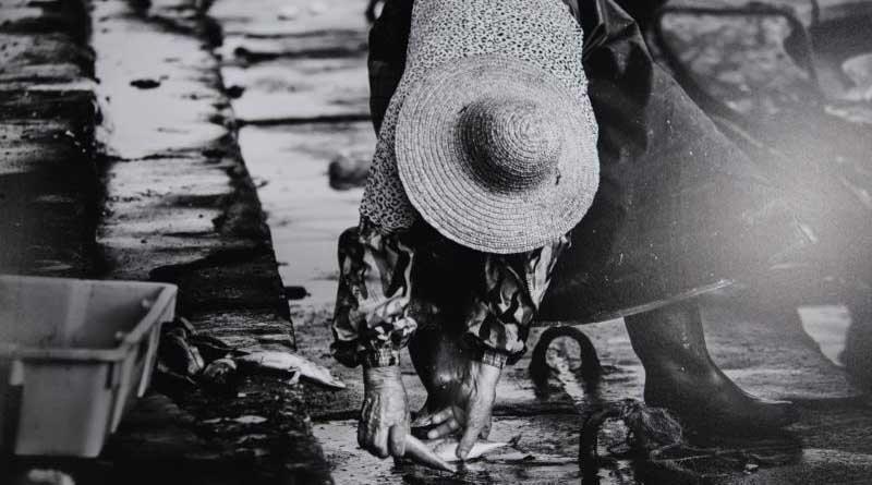 Wang Yao, World Press photo winner exhibits in Haikou feature