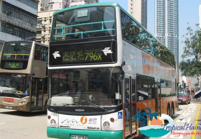 Haikou to make all buses green by 2020.