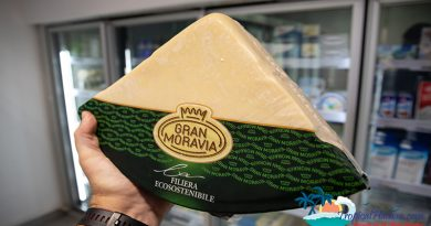 Where to buy cheese in hainan