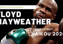 Floyd Mayweather lined up for 2020 exhibition bout in Haikou, Hainan Island