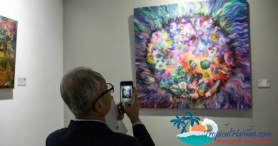 New Art Gallery opens in the Haikou FTZ