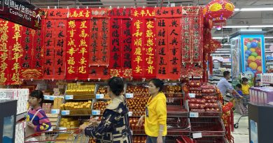Spring Festival Shopping in Haikou by Taisiia Timofieieva