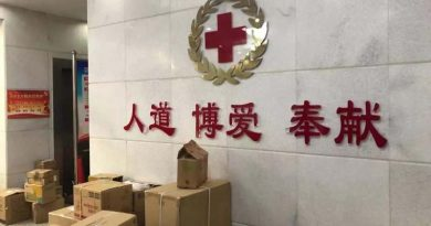 Vice president of The Hubei Provincial Red Cross Society's removed