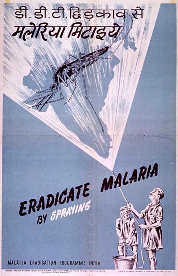 Pandemic poster 7