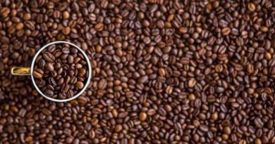 Hainan coffee Xinglong Wanning