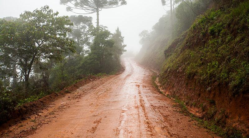 wet-dirt-rural-road-mud-with-mist
