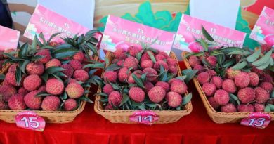 A lychee auctioned for 24,800 yuan2