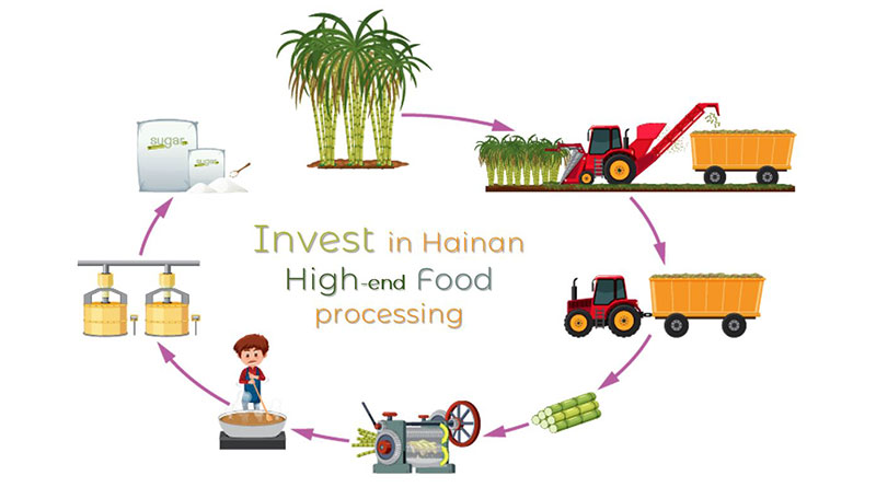 Invest-in-Hainan-high-end-food-processing