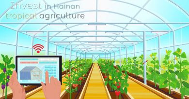 Invest-in-Hainan-tropical-agriculture