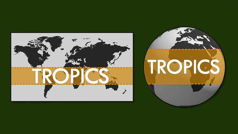 The tropics actually contain about 40 percent of the Earth's landmass